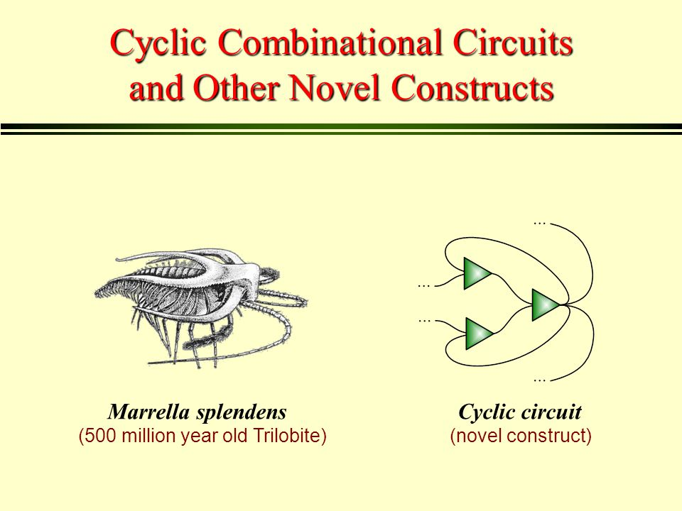 Acyclic (i.e., feed-forward) circuits are always combinational.
