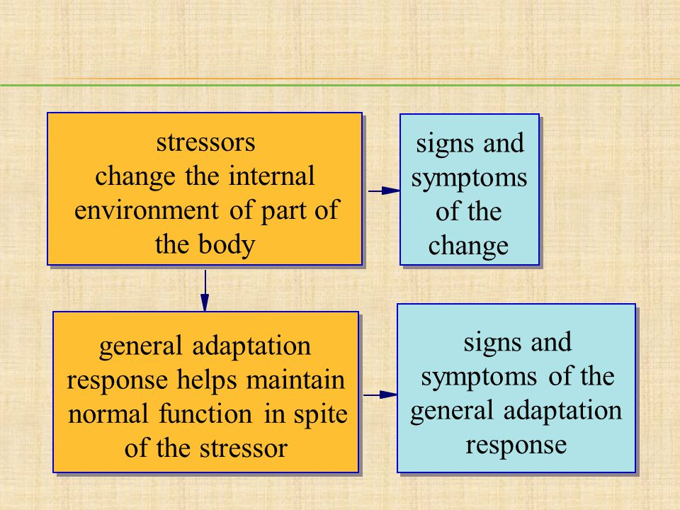 stressors change the internal environment of part of the body general adaptation response helps maintain normal function in spite of the stressor sign