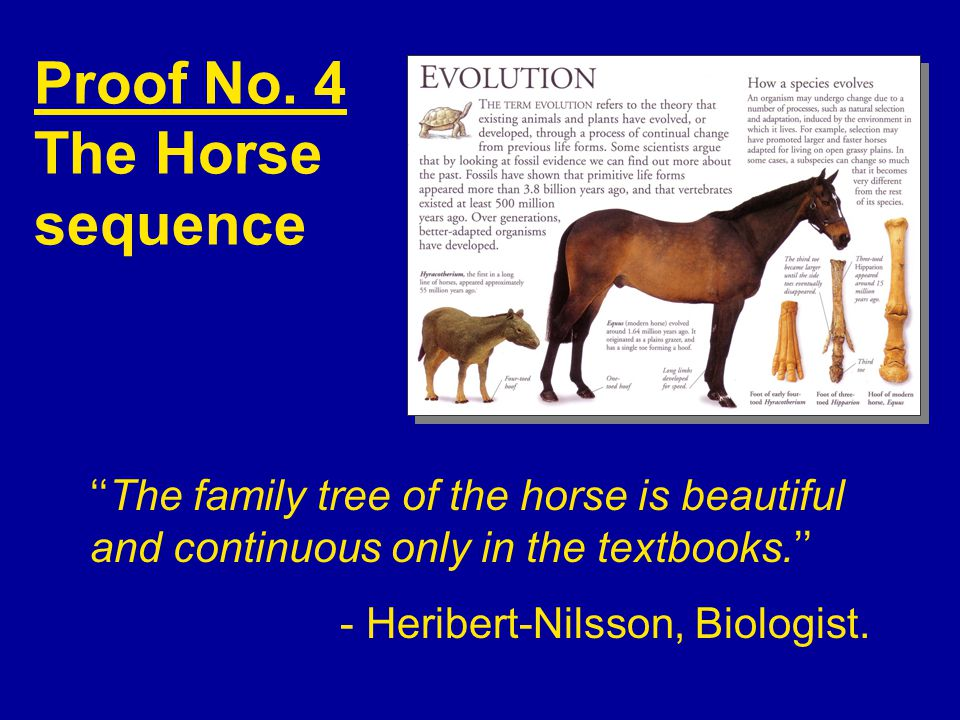 Proof No. 4 The Horse sequence ''The family tree of the horse is beautiful and continuous only in the textbooks.'' - Heribert-Nilsson, Biologist.