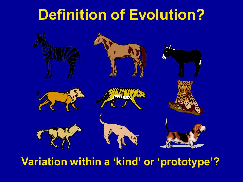 Definition of Evolution? Variation within a 'kind' or 'prototype'?