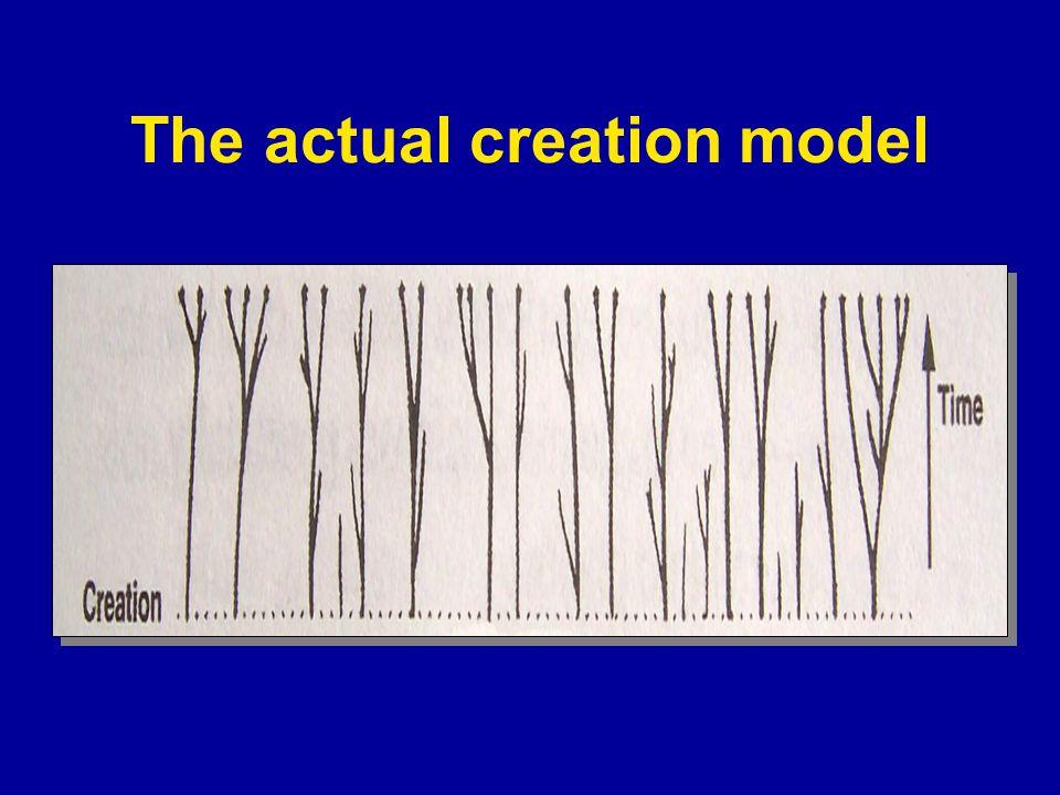 Three Pathways to a Creator Information Complex specified information demands an intelligent designer.