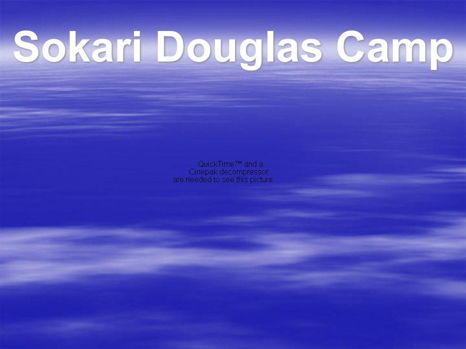 Sokari Douglas Camp