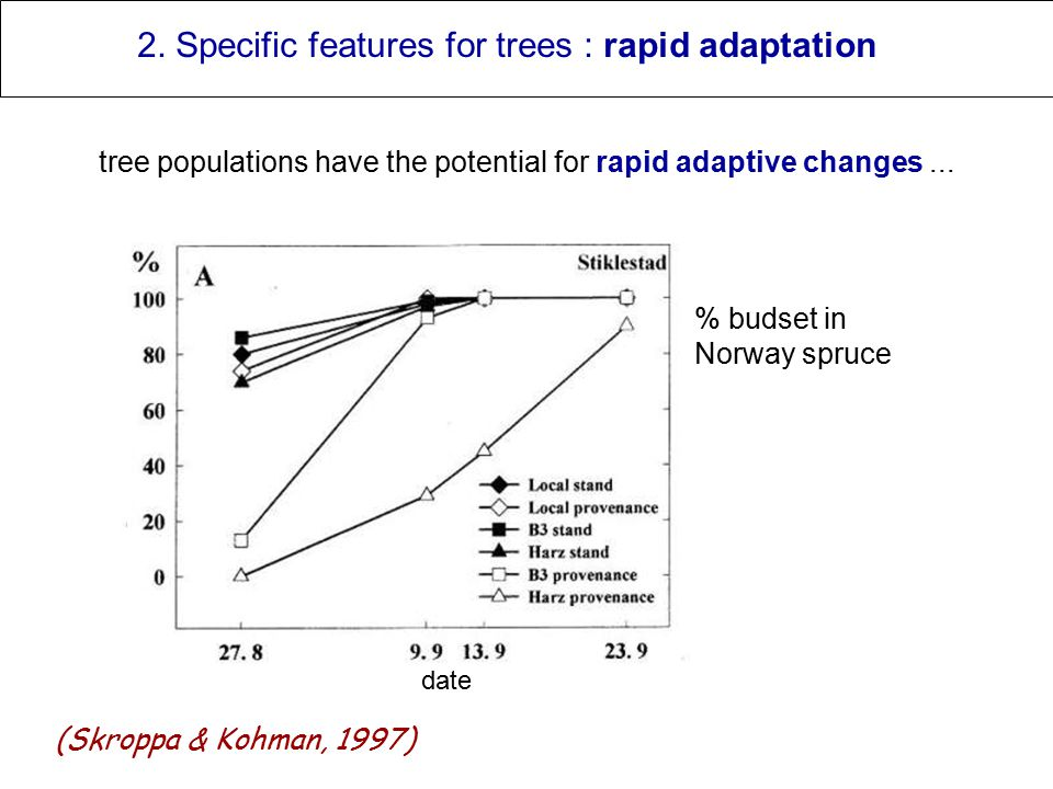 2. Specific features for trees : rapid adaptation tree populations have the potential for rapid adaptive changes... % budset in Norway spruce date (Sk
