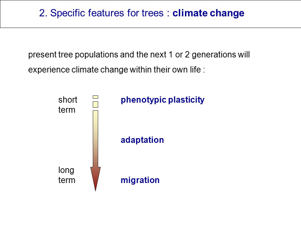 2. Specific features for trees : climate change present tree populations and the next 1 or 2 generations will experience climate change within their o