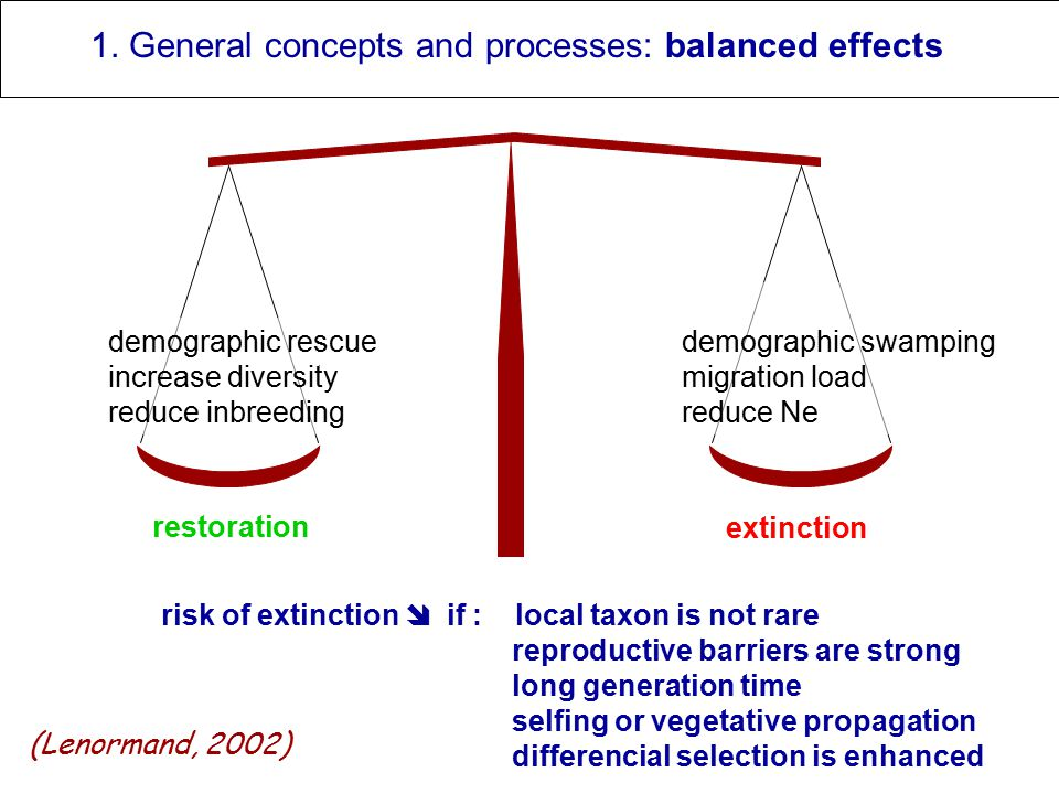 restoration extinction 1. General concepts and processes: balanced effects risk of extinction  if : local taxon is not rare reproductive barriers are