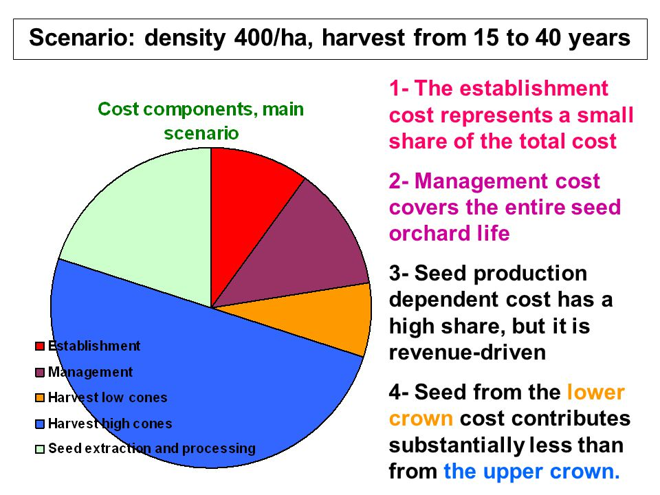 Scenario: density 400/ha, harvest from 15 to 40 years 1- The establishment cost represents a small share of the total cost 2- Management cost covers t