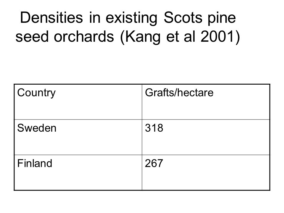 Densities in existing Scots pine seed orchards (Kang et al 2001) CountryGrafts/hectare Sweden318 Finland267