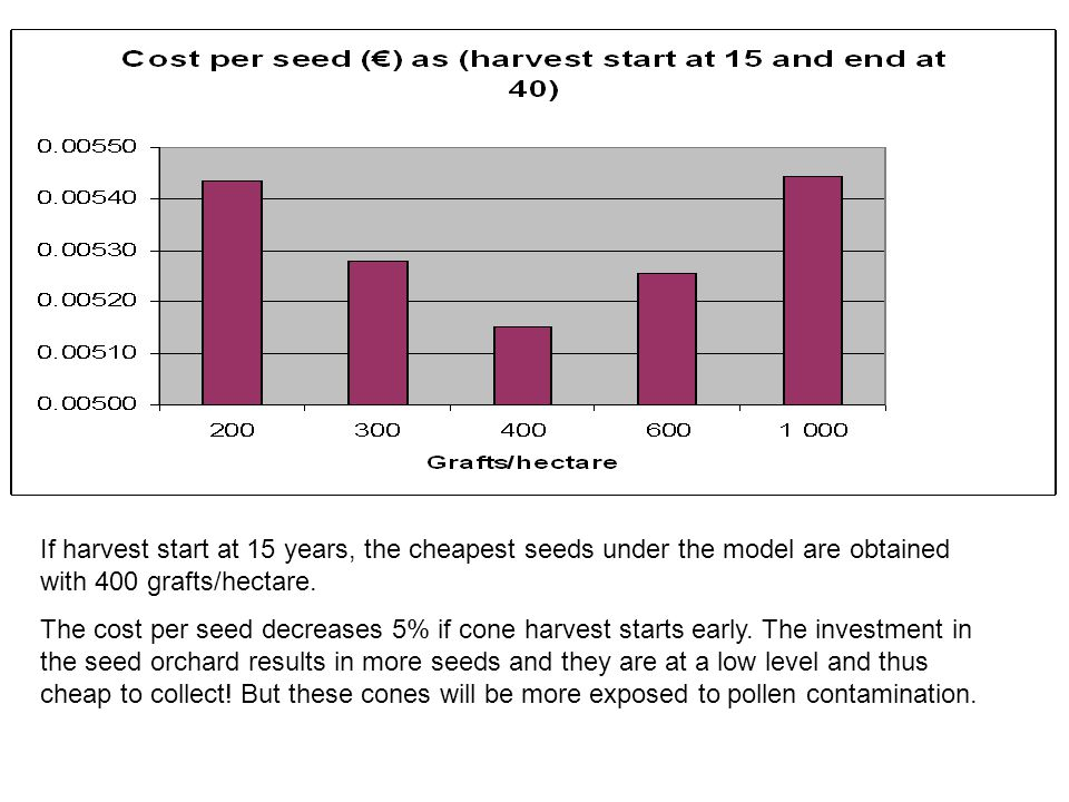 If harvest start at 15 years, the cheapest seeds under the model are obtained with 400 grafts/hectare.