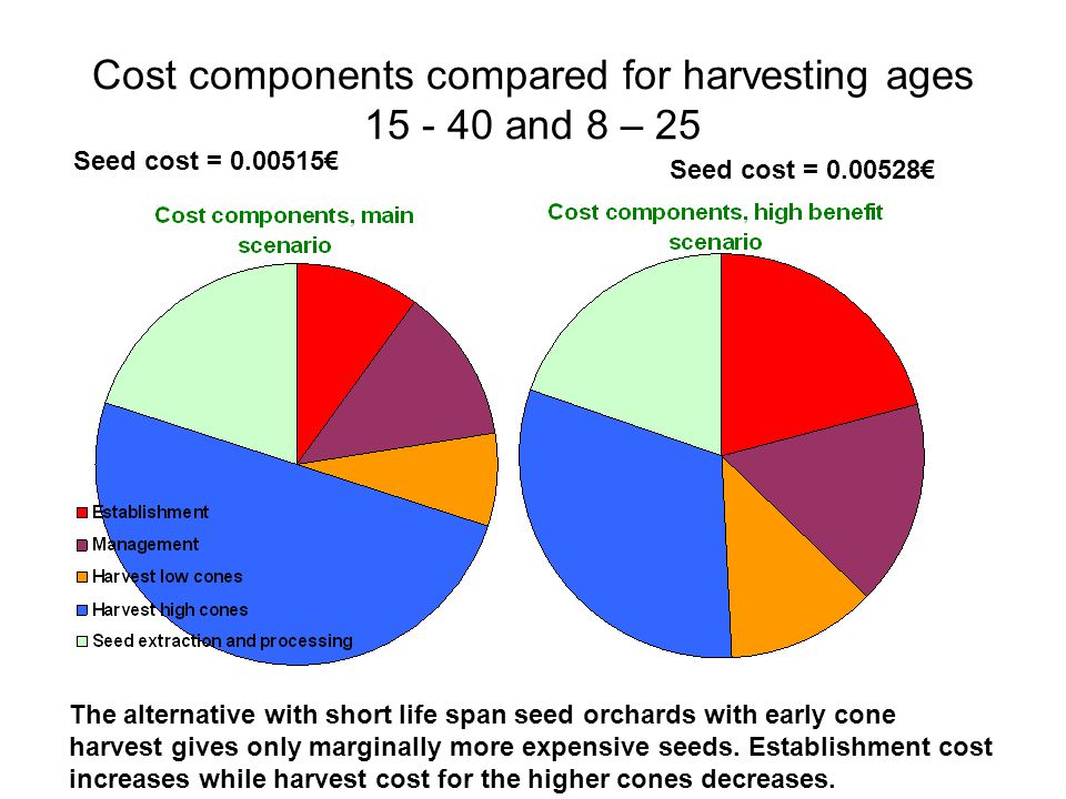 Cost components compared for harvesting ages 15 - 40 and 8 – 25 Seed cost = 0.00515€ Seed cost = 0.00528€ The alternative with short life span seed orchards with early cone harvest gives only marginally more expensive seeds.