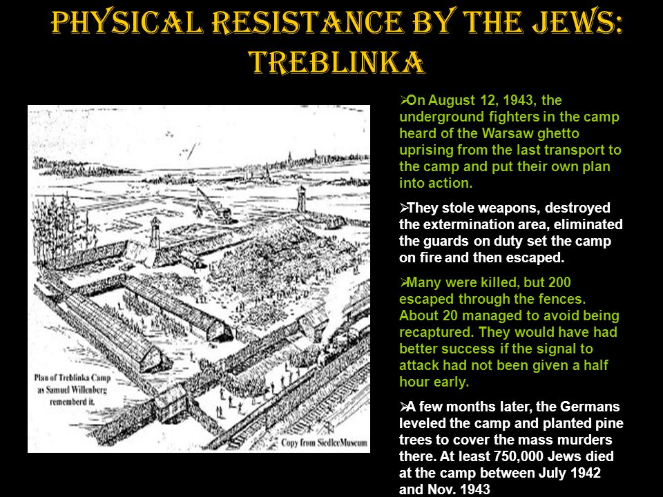 Physical resistance by the Jews: Treblinka  On August 12, 1943, the underground fighters in the camp heard of the Warsaw ghetto uprising from the las