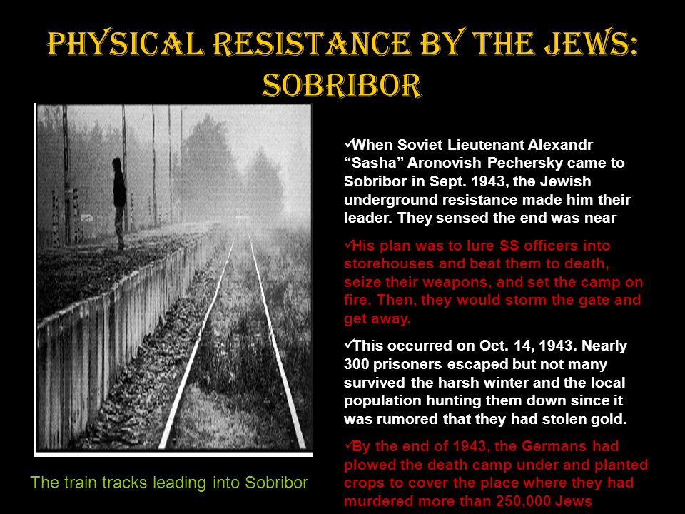 "Physical resistance by the Jews: Sobribor When Soviet Lieutenant Alexandr ""Sasha"" Aronovish Pechersky came to Sobribor in Sept. 1943, the Jewish under"
