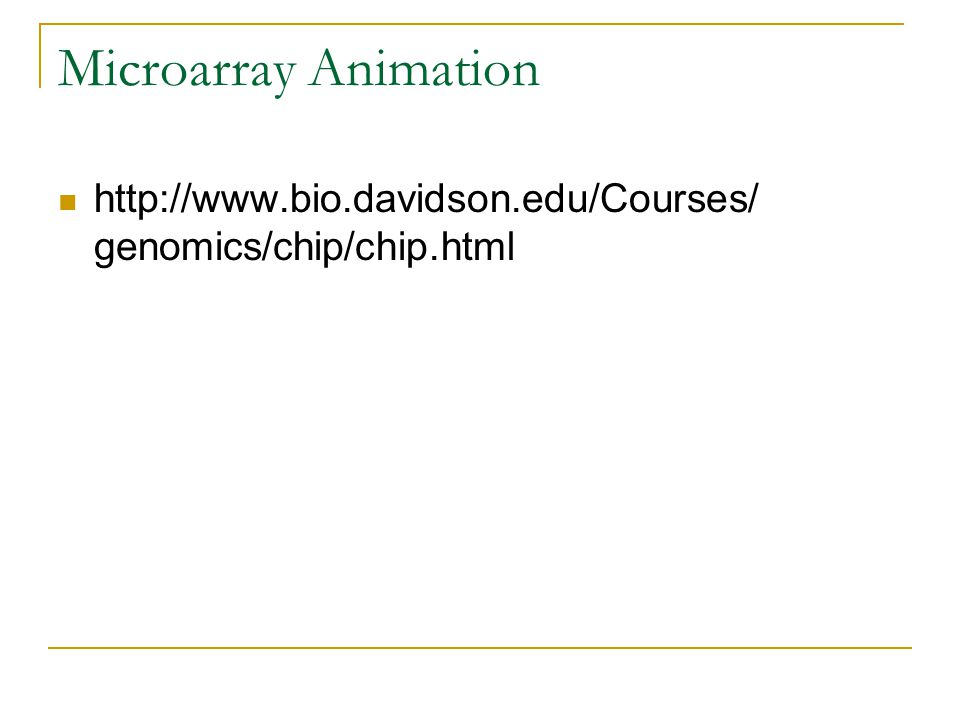 Microarray Animation http://www.bio.davidson.edu/Courses/ genomics/chip/chip.html