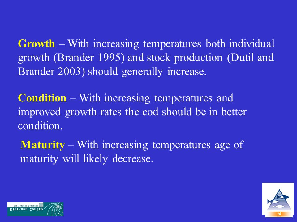 27 With increasing temperatures: Overall Atlantic cod production should generally increase both due to individual growth and stock production and better condition.