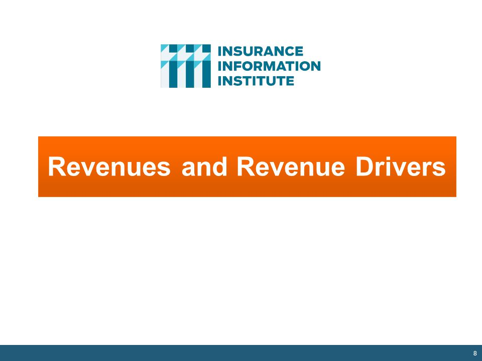 8 Revenues and Revenue Drivers