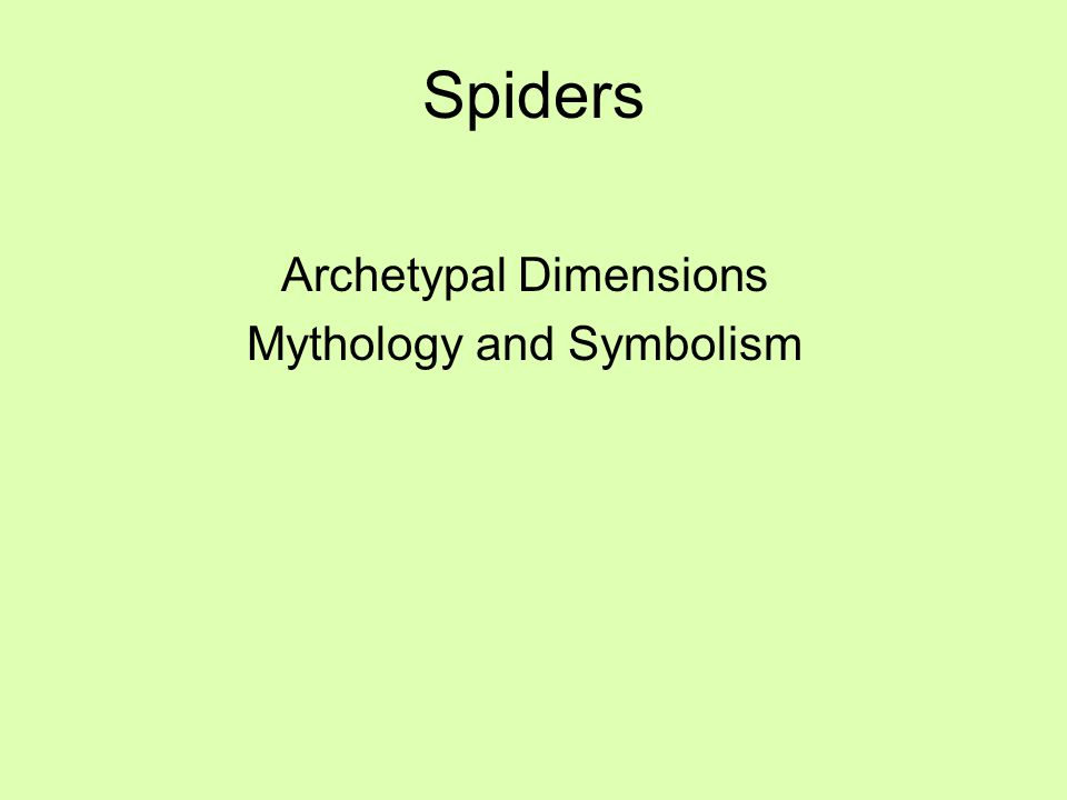 Spiders Archetypal Dimensions Mythology and Symbolism