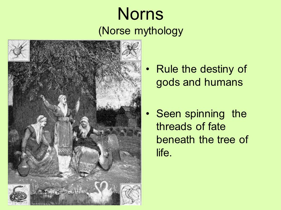 Norns (Norse mythology Rule the destiny of gods and humans Seen spinning the threads of fate beneath the tree of life.