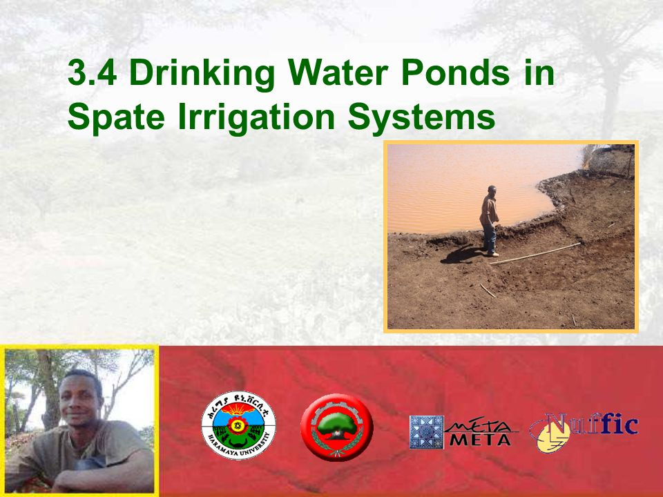 Drinking water in spate irrigated areas: main issues o Low annual rainfall o Deep water table / sometimes fluoride groundwater o Public tubewells out of order o Water from ponds – for humans and livestock: o Polluted o Limited duration of storage o Major reason for hardship