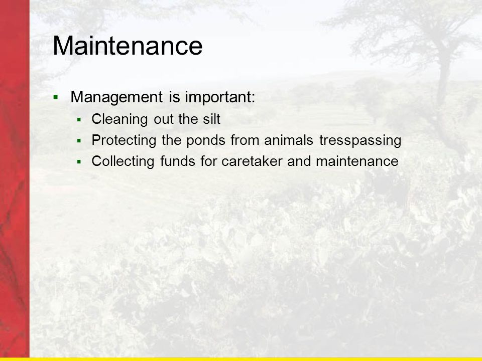 Maintenance  Management is important:  Cleaning out the silt  Protecting the ponds from animals tresspassing  Collecting funds for caretaker and maintenance