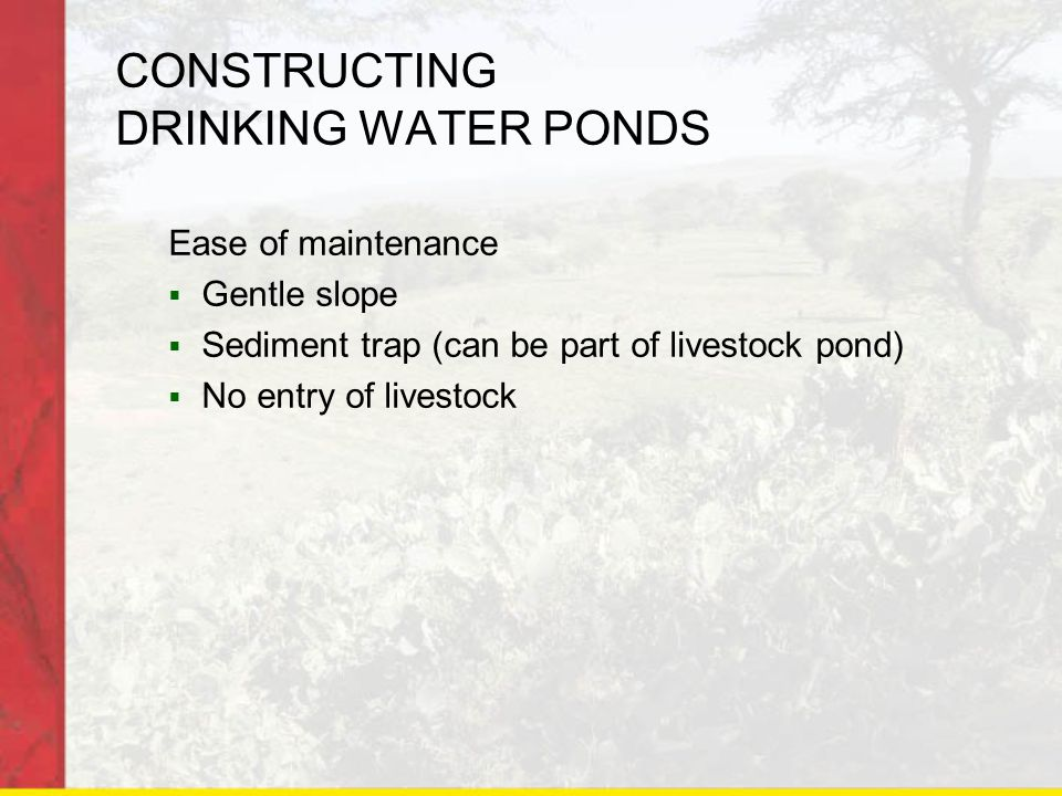 CONSTRUCTING DRINKING WATER PONDS Ease of maintenance  Gentle slope  Sediment trap (can be part of livestock pond)  No entry of livestock