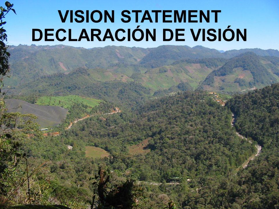 VISION STATEMENT DECLARACIÓN DE VISIÓN