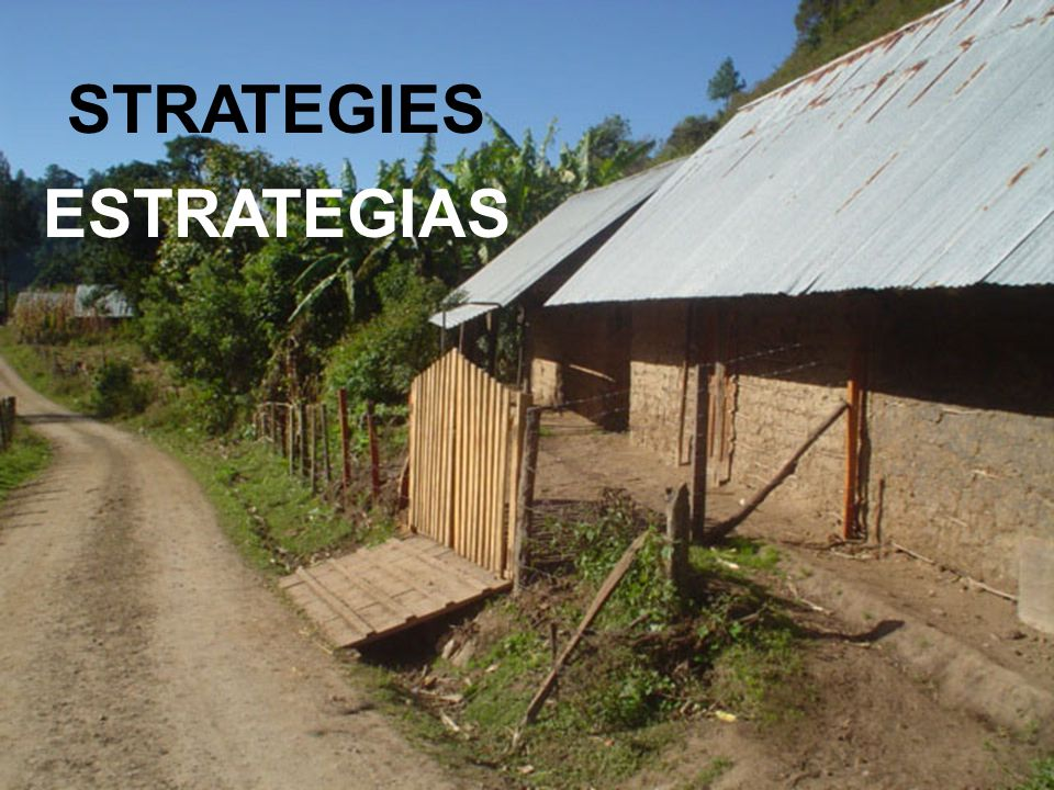 STRATEGIES ESTRATEGIAS