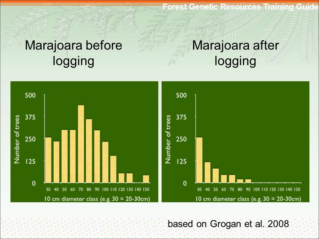 Forest Genetic Resources Training Guide Marajoara before logging Marajoara after logging based on Grogan et al.