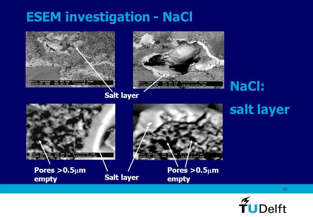 12 ESEM investigation - NaCl Salt layer Pores >0.5  m empty NaCl: salt layer