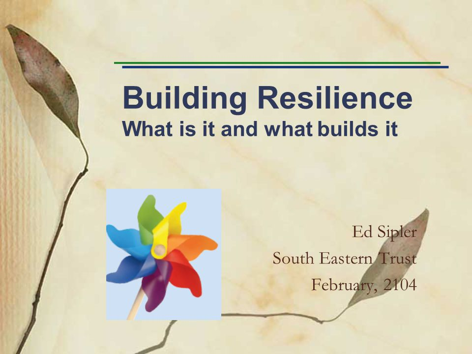 Building Resilience What is it and what builds it Ed Sipler South Eastern Trust February, 2104