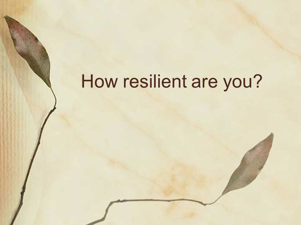 Road to resilience… Road to resilience… Models of building resiliency What we do does matter.