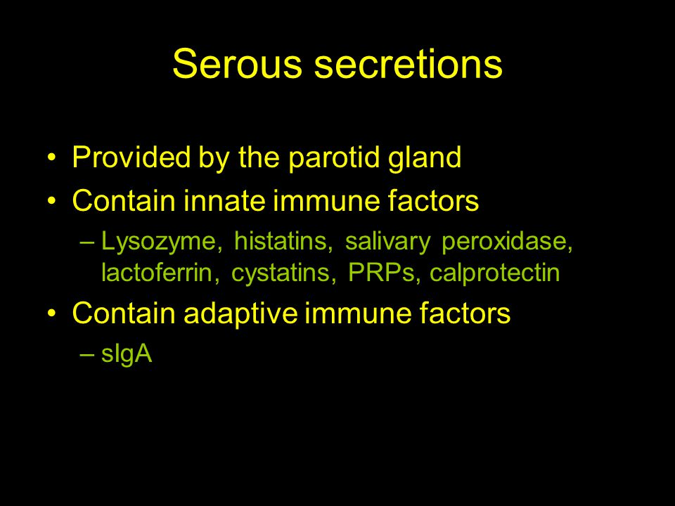 Serous secretions Provided by the parotid gland Contain innate immune factors –Lysozyme, histatins, salivary peroxidase, lactoferrin, cystatins, PRPs, calprotectin Contain adaptive immune factors –sIgA