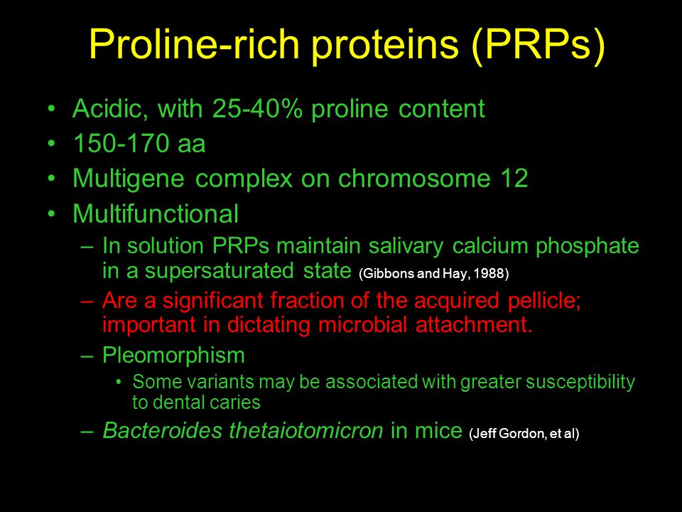 Proline-rich proteins (PRPs) Acidic, with 25-40% proline content 150-170 aa Multigene complex on chromosome 12 Multifunctional –In solution PRPs maintain salivary calcium phosphate in a supersaturated state (Gibbons and Hay, 1988) –Are a significant fraction of the acquired pellicle; important in dictating microbial attachment.