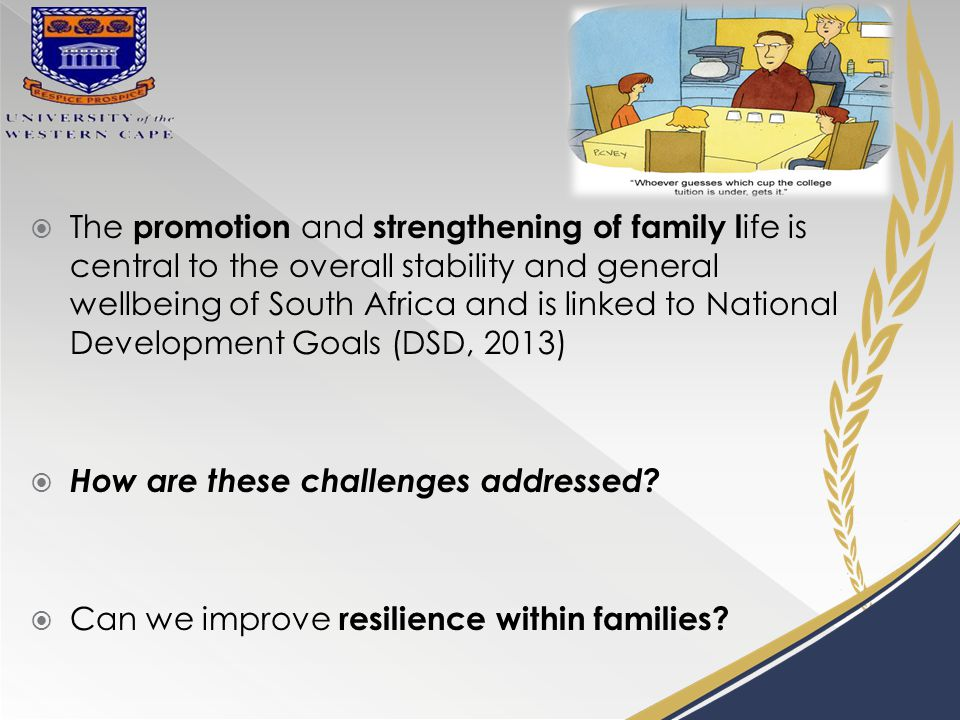  The promotion and strengthening of family l ife is central to the overall stability and general wellbeing of South Africa and is linked to National Development Goals (DSD, 2013)  How are these challenges addressed.