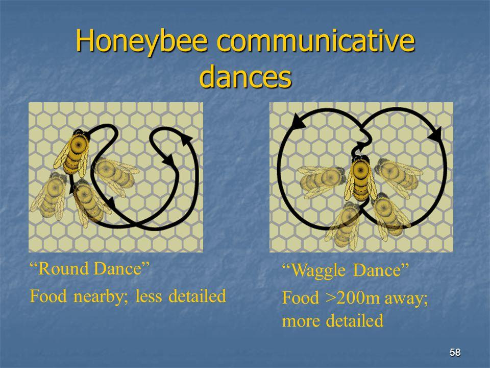 57 Complex Communication