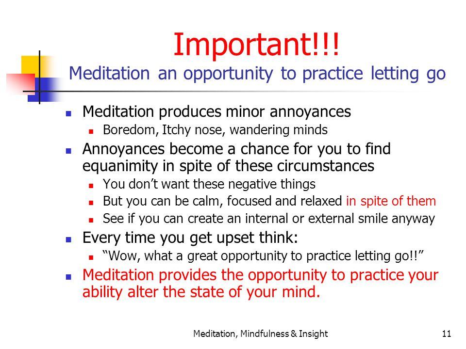 Meditation, Mindfulness & Insight11 Important!!.
