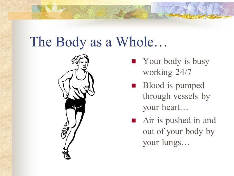 Levels of Organization…Tissue Types of muscle tissue: One type causes your body to move by pulling on bones when it contracts Another type lines the walls of structures inside your body and moves food from your mouth to your stomach A third type is found only in your heart, and enables the heart to contract to pump blood