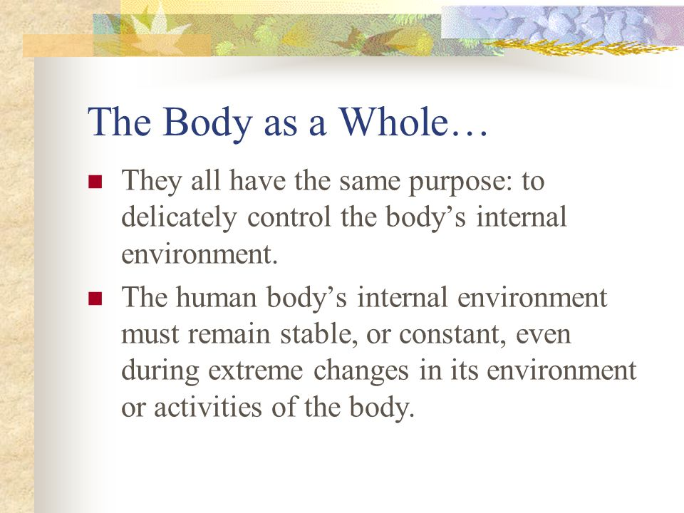 The Body as a Whole… They all have the same purpose: to delicately control the body's internal environment. The human body's internal environment must