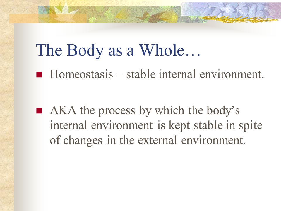 Levels of Organization Review The body as a whole The process by which the body's internal environment is kept stable in spite of changes in the external environment is called homeostasis.
