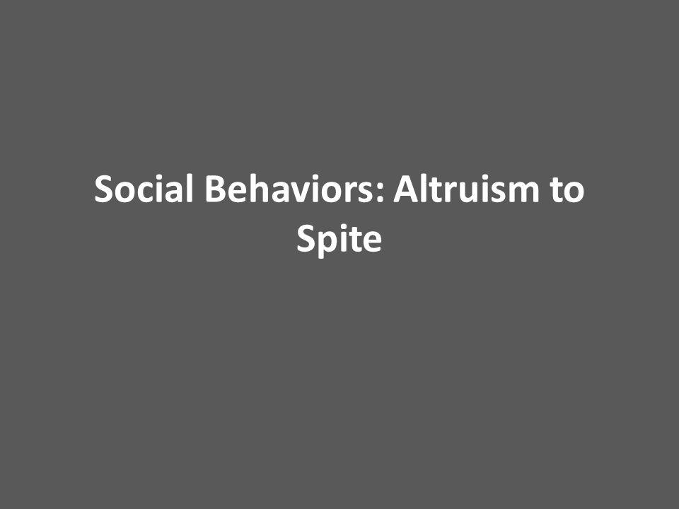 Social Behaviors: Altruism to Spite