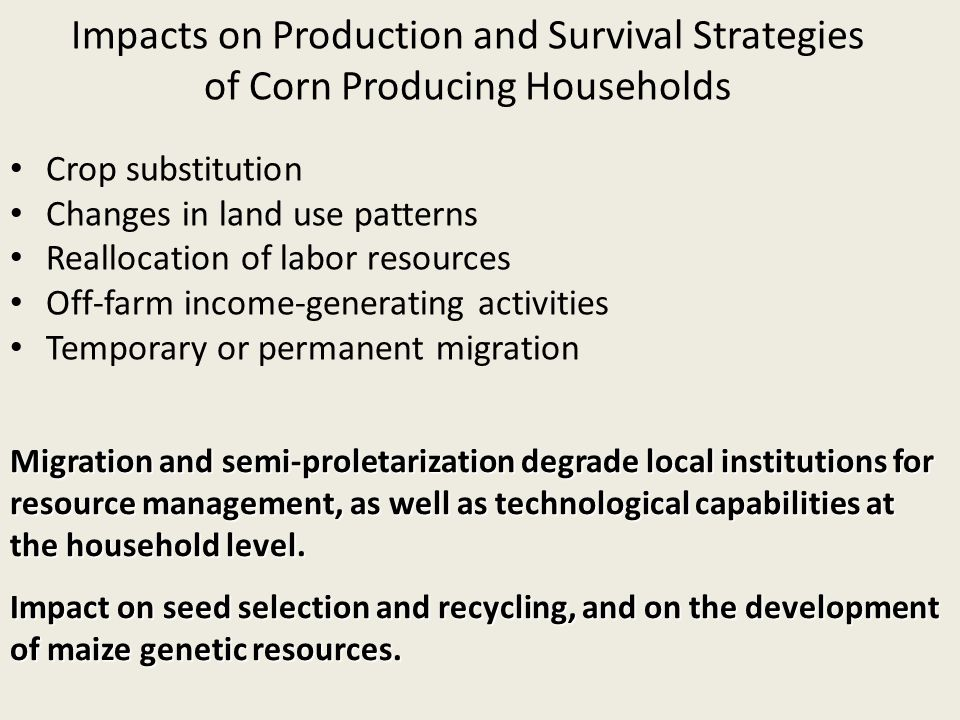Impacts on Production and Survival Strategies of Corn Producing Households Crop substitution Changes in land use patterns Reallocation of labor resources Off-farm income-generating activities Temporary or permanent migration Migration and semi-proletarization degrade local institutions for resource management, as well as technological capabilities at the household level.