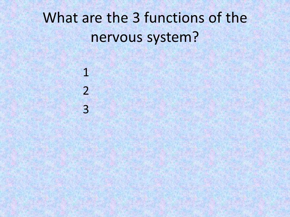 What are the 3 functions of the nervous system 123123