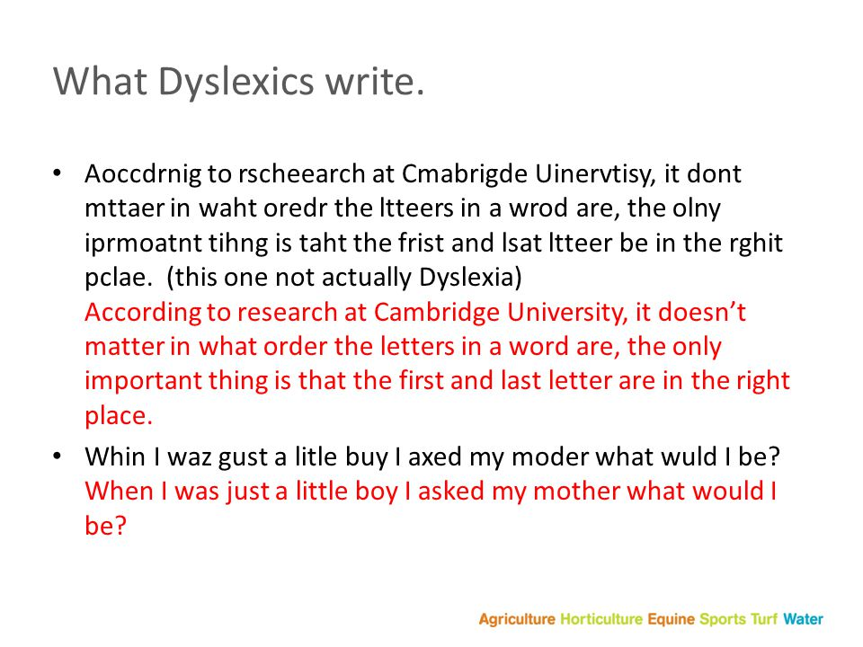 What Dyslexics write.