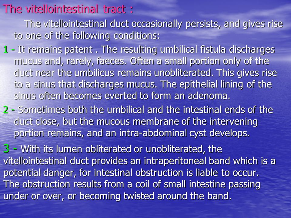 The vitellointestinal tract : The vitellointestinal duct occasionally persists, and gives rise to one of the following conditions: The vitellointestin