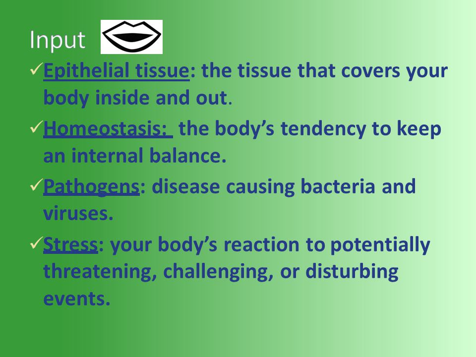 Epithelial tissue: the tissue that covers your body inside and out.