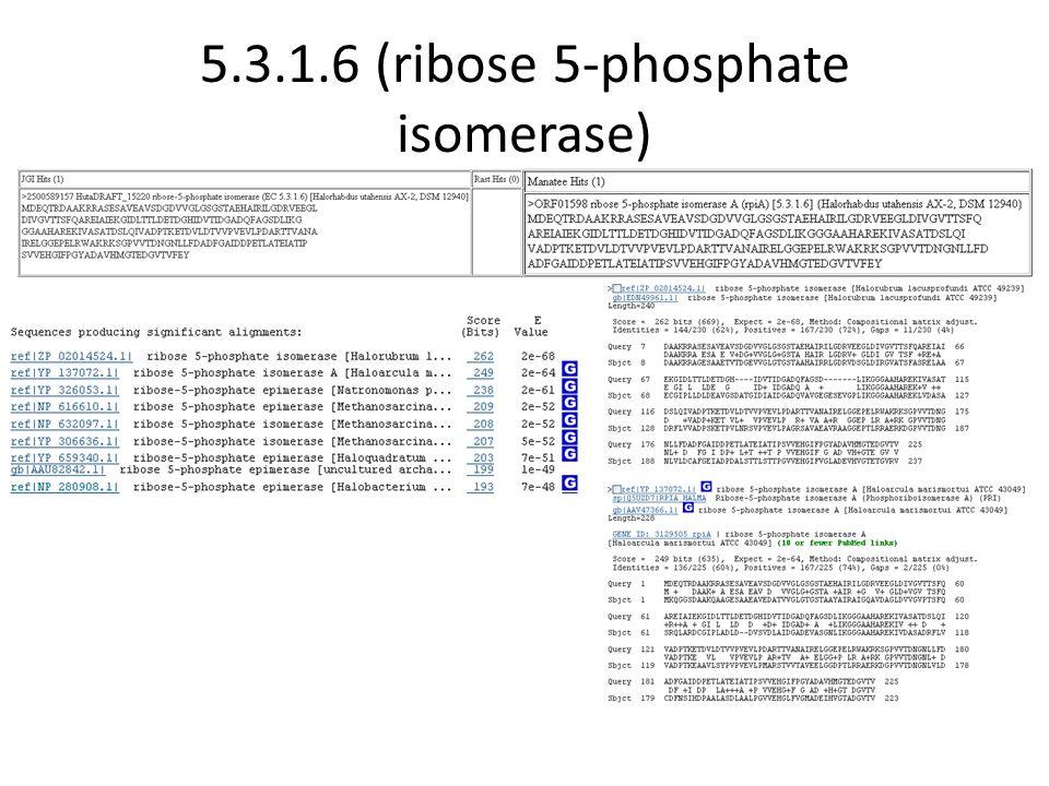 5.3.1.6 (ribose 5-phosphate isomerase)