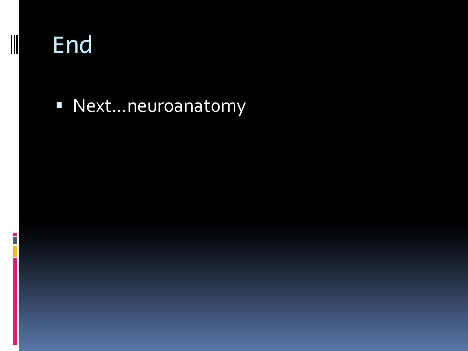 End  Next…neuroanatomy