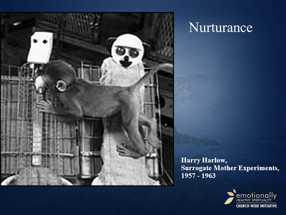 Harry Harlow, Surrogate Mother Experiments, 1957 - 1963 Nurturance
