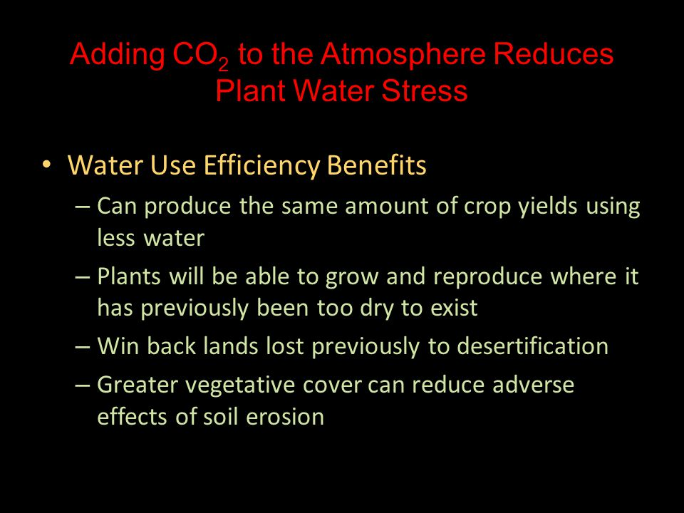 Adding CO 2 to the Atmosphere Reduces Plant Water Stress Water Use Efficiency Benefits Water Use Efficiency Benefits – Can produce the same amount of crop yields using less water – Plants will be able to grow and reproduce where it has previously been too dry to exist – Win back lands lost previously to desertification – Greater vegetative cover can reduce adverse effects of soil erosion