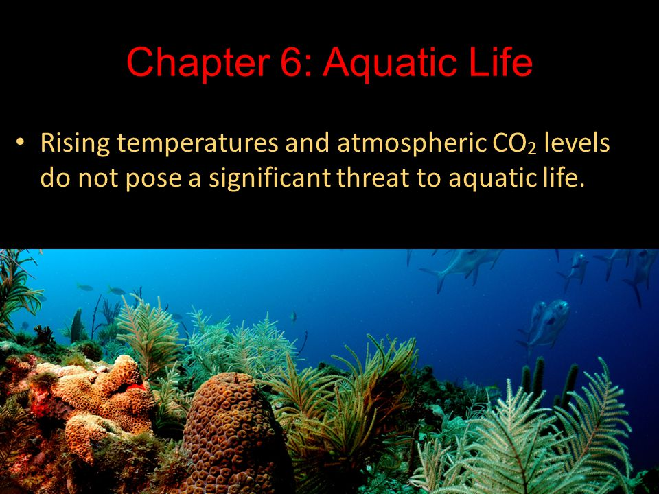 Chapter 6: Aquatic Life Rising temperatures and atmospheric CO 2 levels do not pose a significant threat to aquatic life.