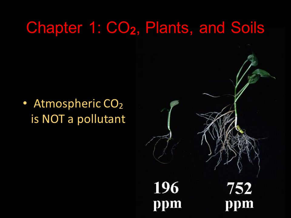 Chapter 1: CO 2, Plants, and Soils Atmospheric CO 2 is NOT a pollutant Atmospheric CO 2 is NOT a pollutant