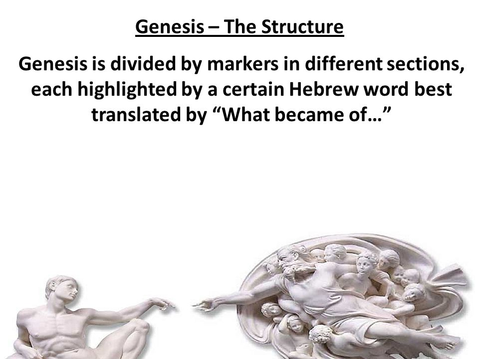 The Confrontation – Genesis 19:4-11 Panic often leads us to dumb solutions. FearPanicAct Dumb